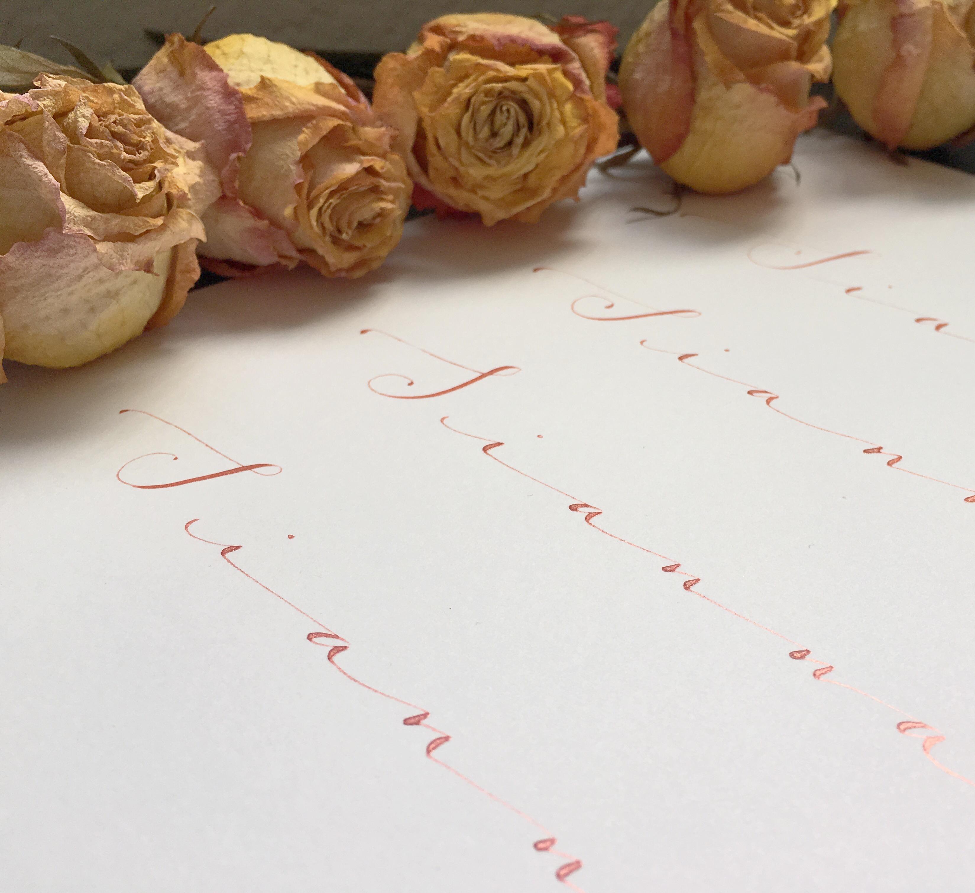 Calligraphy baby girl nursery art print andrea casals